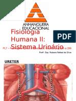 10 UrináRio