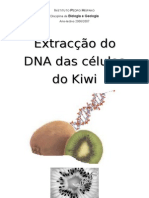 Extracção Do DNA Das Células Do Kiwi