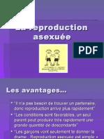 la-reproductionasex5-2