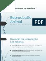 Reprodução III M.pdf