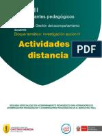 Actividades a Diatncia de IA III Ciclo Acompañantes