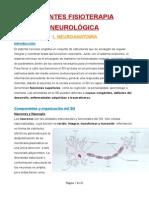 Apuntes Fisio Neurológica