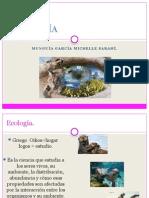 bioetica ecologia