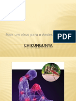 Apresentação sobre chikungunya