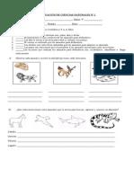Evaluación de Ciencias Naturales Nº2 4º