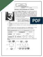 Guía de Genéticas Variaciones de Mendel