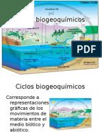 Ciclos biogeoquímicos 2015