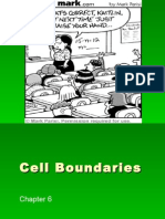 Cell Boundaries Power Point Diffusion and Osmosis REVISED