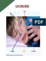 Anatomie de l'OEIL [Compatibility Mode].pdf
