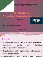 AULA 2 - Envelhecimento Da Pele