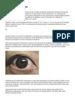 Optica Visual Malaga