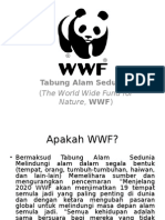 wwf power point.ppt