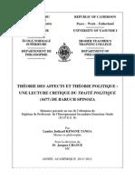 Théorie Des Affects Et Théorie Politique - Spinoza