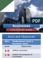 businesses lesson 1