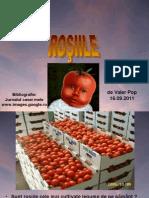 www.nicepps.ro_9342_Rosiile.pps