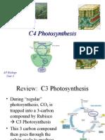 C4 Photosynthesis