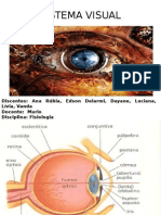 Fisiologia - visão