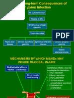 2 Pathogenesis TukakLambung