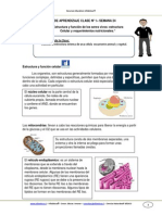 Guia de Aprendizaje Cnaturales 8basico Semana 24 2014