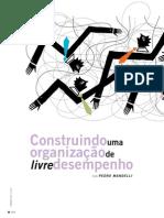 Organização de livre desempenho.pdf