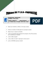 PRUEBAS 1º E S O-PROPUESTAS-1