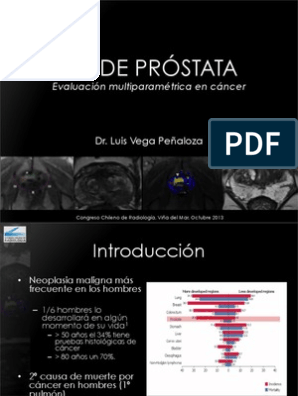 Imagen de resonancia magnética multiparamétrica de la próstata en Florencia pdf