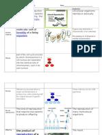 unit 8 vocabulary sheet