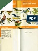 (Colour Series) Birds Blandford