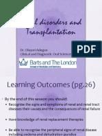 Renal Diseases (2)