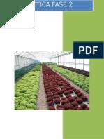 Practica Fase 2 Floricultura UNAD