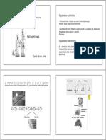 2_fotosintesis.pdf