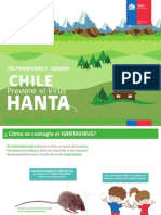 PRESENTACION HANTA (1) (1)