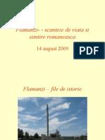 FLAMINZI – FILE DE ISTORIE