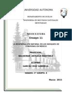 La Regeneración Natural en Los Bosques de Coniferas en México.docx Ensayo2
