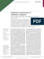 Nature Molecular Mechanisms of Antibiotic Resistance