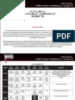 MI40X - Natural Worksheet (1)