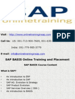 SAP BASIS Training Course Online and Placement - Online Training in SAP