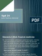 SGD 24 tropmed sken5.pptx