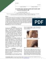 jurnal atresia ani 1.pdf