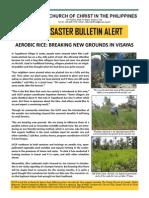 Uccp Bulletin Alert Rehab Sept 2014 1