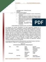 Infeccion Parasitaria Artropodos Causas Consecuencias y Prevencion Primera Parte Lectura