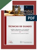 tecnicas_de_guiado(1)