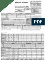 fivha.pdf