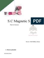 Plan de Afaceri Magnetic