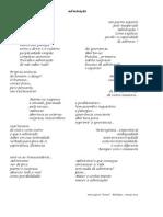 admiratio admirar admiração.pdf