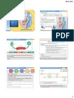 1SH_sist hormonal_alunos (2).pdf