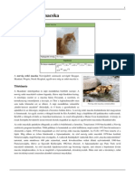 Norvég erdei macska.pdf