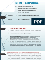 DEPÓSITO TEMPORAL.pptx