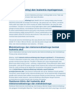 Mielomonoblastnyj Dan Leukemia Myelogenous Akut