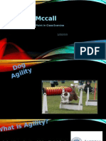 mccallpowerpointpresentation